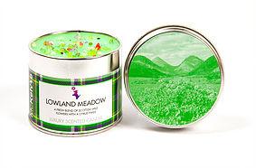 mk-lowland-meadow-1