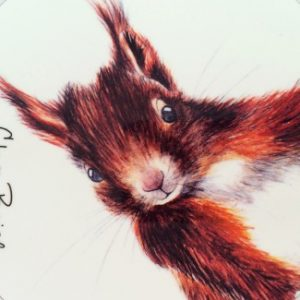 red-squirrel-325x390