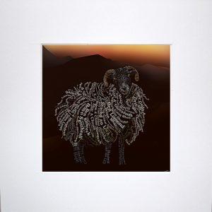 TCA-mnt-Wooly Munros