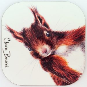 CB - Squirrel_coaster